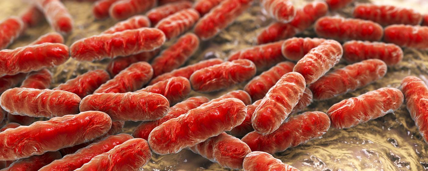 Integratori Probiotici