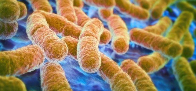Gli effetti a lungo termine dei Probiotici nella terapia della colite ulcerosa: studio clinico.