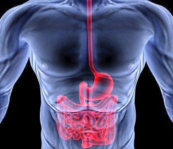 """Disbiosi Intestinale """"specifica"""" per dirimere la diagnosi tra Morbo di Crohn e Rettocolite Ulcerosa"""