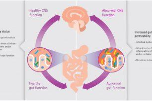 Microbioma Intestinale e Neuroinfiammazione come possibili cofattori di insorgenza della Malattia di Alzheimer